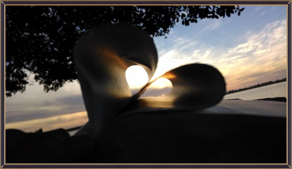 bible-heart-Lguapogreengo