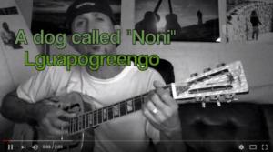 A Dog called Noni